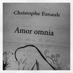 Amor Omnia